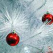 В новогоднюю ночь в Черниговке совершено убийство